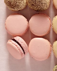 French Macaron Recipes That Are Truly Fantastique! | Rose Raspberry Macarons: Theres nothing so ladylike as an all-pink pastry, but everyone can enjoy these test-kitchen favorites, flavored with rose water and sealed with raspberry jam.  #food #recipe #desserts #frenchdesserts #dessertrecipes #marthastewart