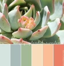 Succulent color pallet. I wonder if Baran would think I'm crazy if I used some of these colors and painted the dining room chairs different colors?!! I think it would be cute!