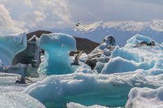 Jökulsárlón Glacier Lagoon In Iceland.