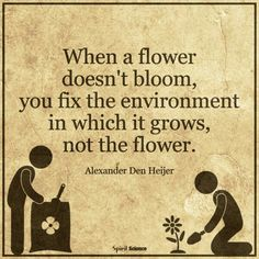 When a flower doesn't bloom, You fix the environment in which it grows, not the flower!