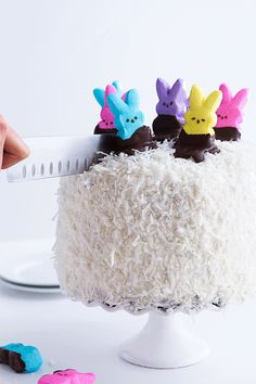 Chocolate Coconut Layer Cake with Peeps