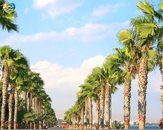#Cyprus #Summer #holidays #hot #beauty #super #enjoy #beach #sea