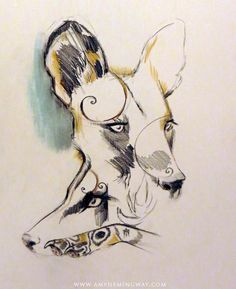 Wild dogs, cape hunting dogs, african, painted dogs, wildlife, paw, hound, dog painting, watercolour, drawing