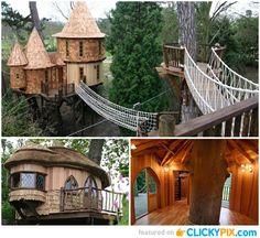 22 Awesome Tree Houses