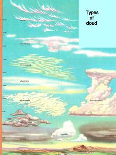 Types of cloud - Science Cycle 1 Week 23