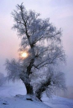 Cold...but breathtaking!!