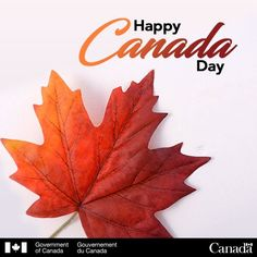 Our Home And Native Land. Native Canadian, I Am Canadian, Canadian Bacon, Happy Birthday Canada, All About Canada, Canadian Things, Government Of Canada, Canada Eh, True North