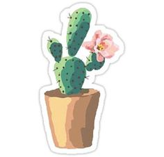 Stickers Cool, Cactus Stickers, Bubble Stickers, Printable Stickers, Laptop Stickers, Journal Stickers, Planner Stickers, Bloom Where You Are Planted, Watercolor Cactus