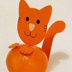 mandarijn poesje