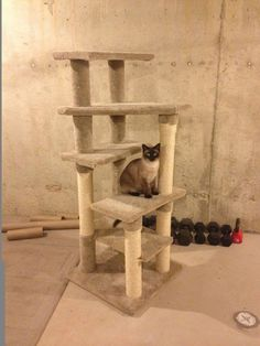 Homemade Cat Tree.. I need to do this!