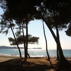 Paguera beach  in Mallorca. mallorca34.com