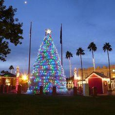 Chandler Arizona Tumbleweed Tree Lighting & Parade of Lights is December 7 2013!