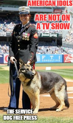 So true! The German Shepherd A Big Thank You to all Service dogs and their handlers!
