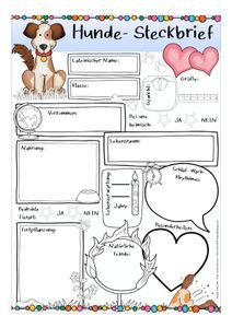Steckbrief Hunde Unterrichtsmaterial Im Fach Sachunterricht In 2020 Hund Steckbrief Unterrichtsmaterial Schulhund