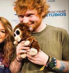 Listen to every Ed Sheeran track @ Iomoio Ed Sheeran, Little Mix, Tenerife Sea, Happiness Challenge, Baby Lips, Music Is Life, Teddy Bear, Songs, Animals