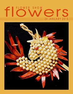 20 January 2015 – The Year in Flowers from FLOWER SHOW FLOWERS at: http://www.flowershowflowers.com/blog