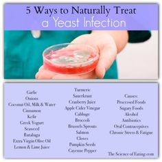 Foods That Treat Yeast Infection