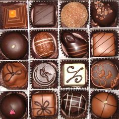 Box of chocolates=hard to choose which one.