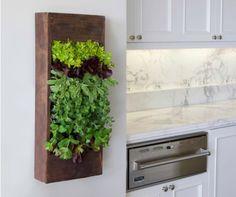 Image result for kitchen plant shelf decorating ideas