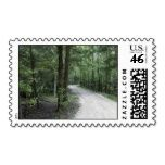 Thru the Florida Woods Stamps