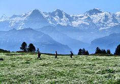 Eiger Mönch and Jungfrau Photo: Fritz Bieri