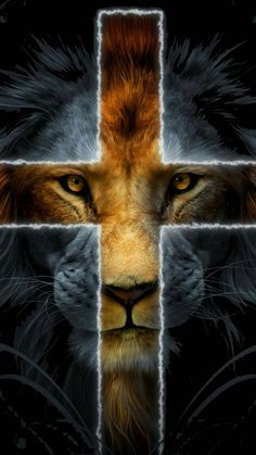 lion of the tribe of Judah Jesus Wallpaper, Tier Wallpaper, Animal Wallpaper, Tumblr Wallpaper, Lucky Wallpaper, Lion Pictures, Jesus Pictures, Tribe Of Judah, Jesus Art