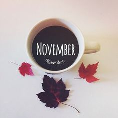Of hearth and home — It is the month to celebrate how thankful we are. Hello Autumn, Autumn Day, Autumn Leaves, Hello November, Sweet November, Happy November, Autumn Aesthetic, Hearth And Home, Happy Fall Y'all