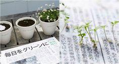 """O jornal sustentável japonês """"The Mainichi"""" tem uma proposta diferente: seu…"""