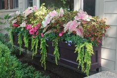 shade tolerant annuals | Dirt Simple-----beautiful arrangement.....wonder what all it is?? Must find out...
