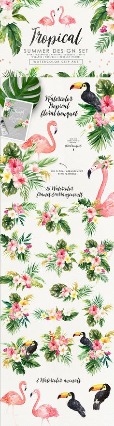 Summer Design Set-Tropical/Wedding/Clip art collection/Individual PNG files/Hand Painted/wedding invitation/animals/logo template
