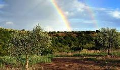 Αποτέλεσμα εικόνας για greece autumn
