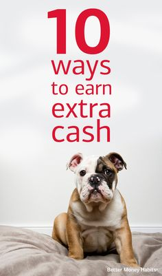 If you want to give your bank account a boost after the holidays, getting creative might be the way to go. Pet-sitting, tutoring and even selling at a farmers' market can help you bring in some extra cash. #BetterMoneyHabits