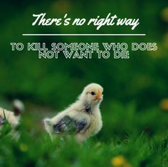 All animals value their lives.