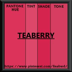 PANTONE SEASONAL COLOR SWATCH ROUGE RED TEABERRY