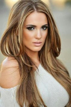 Light Brown Hair w/ Blonde Highlights