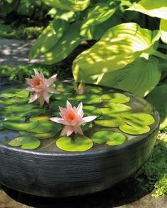 30 Beautiful Backyard Ponds And Water Garden Ideas I have always wanted one of these (potted water garden) and don't know why I don't just build one! A pump, pot and plants. Water Garden in a pot! Container Water Gardens, Container Gardening, Container Pond, Small Water Gardens, Plant Containers, Ponds Backyard, Garden Ponds, Garden Water, Koi Ponds