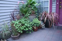 9 Whole Clever Tips: Backyard Garden Decor How To Grow backyard garden inspiration summer. Backyard Garden Landscape, Modern Backyard, Garden Landscaping, Garden Pallet, Small Gardens, Outdoor Gardens, Small Garden Design, Cool Ideas, Container Gardening