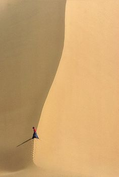 sand dune, somewhere in Niger, Africa Desert Dunes, Minimalist Photography, Color Photography, Light And Shadow, Oeuvre D'art, Beautiful World, Wonders Of The World, Scenery, Illustration