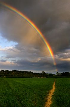 """And God said to Noah, ""This is the sign of the covenant which I have established between Me and all flesh that is on the earth."""" Genesis 9: 12-17"