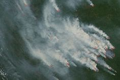 Wildfires Rage in Siberia : Image of the Day : NASA Earth Observatory 06/30/2016