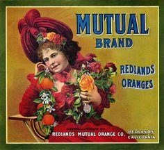 ART & ARTISTS: Citrus Fruit Crate Labels - part 1