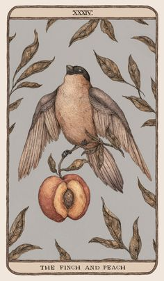 Woodland Wardens - Illustration and Art Education Arte Peculiar, Illustrator, Arte Sketchbook, Poster Prints, Art Prints, Aesthetic Art, Collage Art, Art Inspo, Art Reference