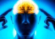 Herbs To Help Boost Brainpower