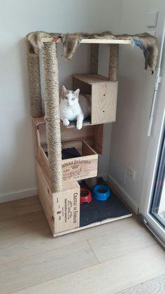 cat toys to make \ cat toys . cat toys to buy . cat toys to make . Diy Cat Tower, Homemade Cat Tower, Cat House Diy, House For Cats, Cat Towers, Cat Shelves, Cat Playground, Cat Enclosure, Cat Room