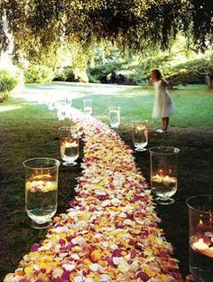 Para camino de entrada al banquete, considerar cilindros de acrilico de Magnolia.
