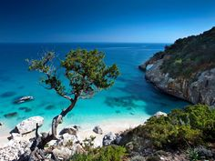 Cala Goloritzè is one of Italy's most enduringly famous beaches, located at the base of a ravine on Sardinia's idyllic northeastern coast