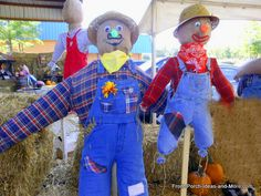 We show you how to build a scarecrow for your front porch or yard. Making scarecrows is fun for the entire family and they make autumn decorating easy. Enjoy our scarecrow pictures from the workshop. Autumn Decorating, Porch Decorating, Decorating Ideas, Craft Ideas, Make A Scarecrow, Scarecrow Ideas, Scarecrow Fest, Scarecrow Party, Autumn Art