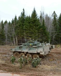 Canadian Army, Paint Schemes, Cold War, Armed Forces, Military Vehicles, Bud, Tanks, Strong