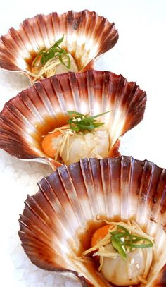 ♂ Still Life Food Styling food photography Seafood Recipes, Gourmet Recipes, Appetizer Recipes, Appetizers, Cooking Recipes, Food Design, Coquille Saint Jacques, Fish And Seafood, Food Presentation