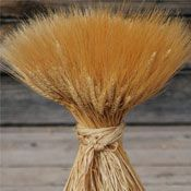 $28 for 2 lbs, $198 for 16 lbs• Wheat Sheaves (Sheaf, Shocks, Centerpiece, Center piece) 24oz (2LB)